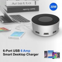 6-Port USB Desktop Charger (30W 6A) (Silver)