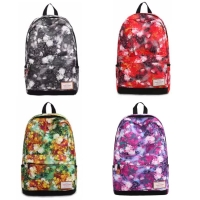 Casual Canvas Laptop Bag / Shoulder Backpack / School Backpack FC90188